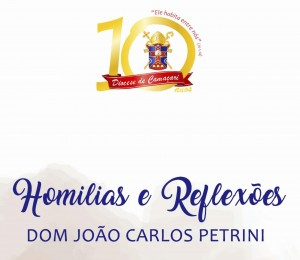 Baixe gratuitamente um e-book com seleção de Homilias e reflexões de  Dom Petrini nos dez anos da Diocese de Camaçari