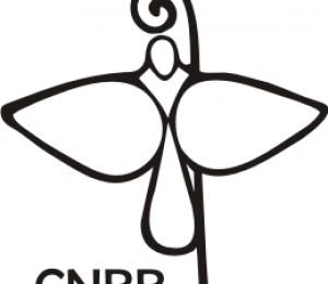 CNBB escreve mensagem sobre a Conferência das Nações Unidas Rio+20